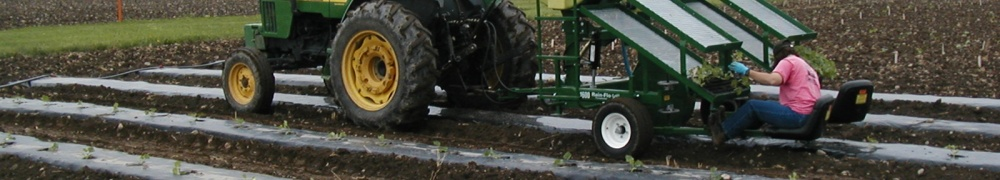 photo of a tractor and staff plant crop